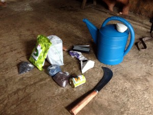 Assorted seeds, grass cutters, sharpener and water sprinkler
